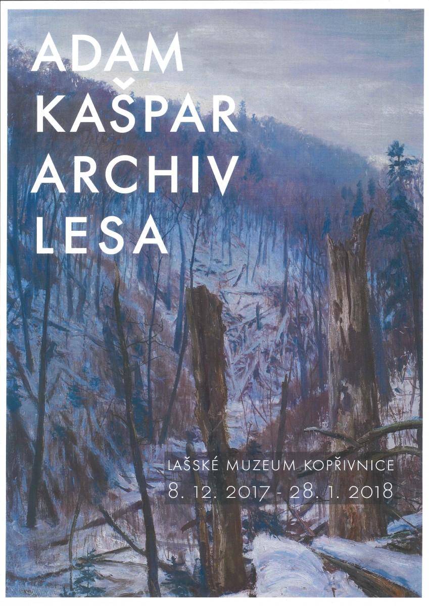 Archiv lesa
